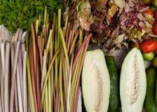 番木瓜,水lilly抽去和新鲜的有机菜 免版税库存图片