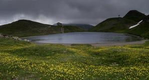 番红花花在前景的沿Scaffaiolo湖是皮斯托亚托斯卡纳和摩德纳一点红Romag省的一个湖  免版税图库摄影