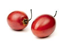 番茄 库存照片
