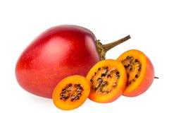 番茄 免版税图库摄影