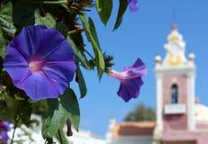 番薯属purpurea Estoi教堂花和宫殿在背景中 库存图片
