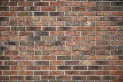 畸变自由,杂色颜色砖墙 图库摄影