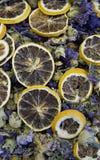 疏散干花卉茶背景与切片的桔子 库存图片