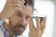 医疗专业执行的测试在实验室 图库摄影