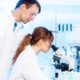 医疗保健专家在实验室。 免版税库存照片