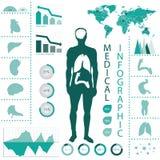 医疗信息图表。 图库摄影