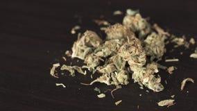 医疗大麻特写镜头在桌上的 股票视频