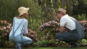治疗植物的年轻微笑的夫妇 股票视频