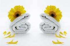 疗法毛巾健康 免版税库存图片