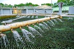 治疗的滴流生物滤器喷洒的污水在污水Pla 免版税库存图片