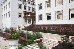 疗养院阿尔泰冠 免版税库存照片