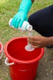 疟蚊网的混合的毒物 图库摄影