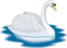 疣鼻天鹅游泳的例证 库存例证