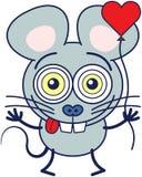 疯狂地感觉在爱的逗人喜爱的老鼠 免版税库存图片