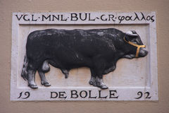 疯狂的公牛 免版税库存图片