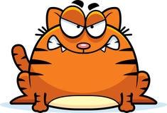 疯狂的小的猫 免版税库存图片