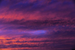 疯狂的桃红色云彩 图库摄影