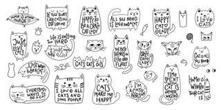 疯狂的爱猫夫人衬衣行情字法 图库摄影