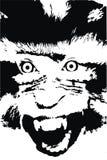 疯狂的猴子 免版税库存照片