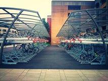 疯狂的自行车 库存照片
