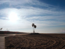 疲倦在多克魏莱尔海滩国家公园的轨道、道路和棕榈树 免版税库存图片