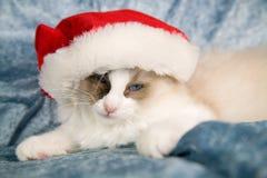 疲倦的圣诞节 免版税库存图片