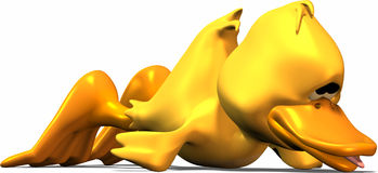 疲倦的鸭子 图库摄影