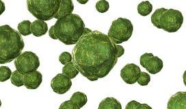病毒在白色3D的绿色回报的细菌回报 向量例证