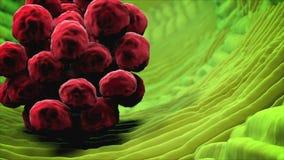 病毒被传染的人体组织 病毒,细菌,微生物接近  英尺长度 向量例证
