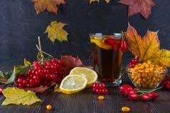 病症概念:茶用秋天莓果海鼠李、荚莲属的植物、玫瑰果、花揪和秋天叶子 与维生素C的饮料 库存照片