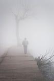 刻痕薄雾在国家土耳其 库存图片