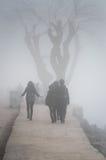 刻痕薄雾在国家土耳其 库存照片