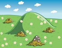 痣和田鼠窝绿色风景的与花 库存图片