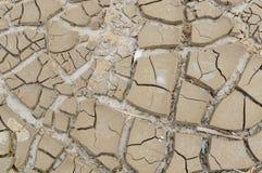 贫瘠地球 背景破裂的干燥地球 破裂的泥模式 在镇压的土壤 天旱土地 环境天旱纹理 免版税库存照片