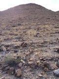 贫瘠山坡Judean原野,以色列 库存照片