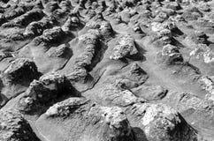 瘤石头地面 免版税库存图片