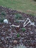 瘾创造的骨骼,隐喻 免版税库存图片