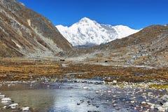 登上卓奥友峰看法从Gokyo,尼泊尔的 免版税图库摄影