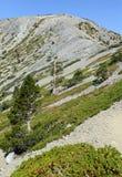 登上圣安东尼奥或登上Baldy,加利福尼亚 库存照片