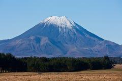 登上死命/Ngauruhoe的上面在雪俯视的领域和树包括在新西兰 库存照片
