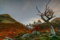 登上费兹罗伊看法在日落期间的国家公园Los Glaciares国家公园 在巴塔哥尼亚的秋天, 免版税库存图片