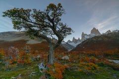 登上费兹罗伊看法在日落期间的国家公园Los Glaciares国家公园 在巴塔哥尼亚的秋天, 免版税图库摄影