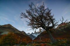 登上费兹罗伊看法在日落期间的国家公园Los Glaciares国家公园 在巴塔哥尼亚的秋天, 库存图片