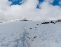 登上Glitterthund 第二座高山在挪威, Jotun 库存照片
