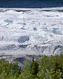 登山人冰川冰根 免版税库存照片