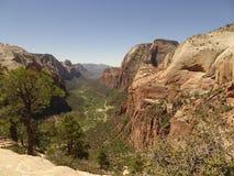登陆足迹-在锡安国家公园,犹他,美国的看法的天使上面  免版税库存照片