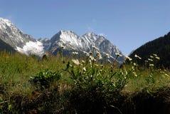白云岩北部的意大利 免版税库存照片