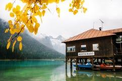 白云岩的,美好的自然意大利自然风景阿尔卑斯湖Dobbiaco 库存图片