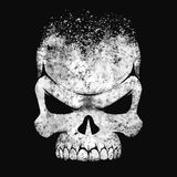 黑白人的头骨 库存图片