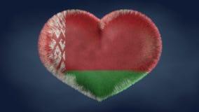 白俄罗斯的旗子的心脏 库存图片